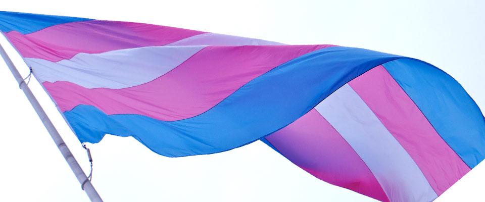 Fenway Institute Collaborates On Transgender Population Study